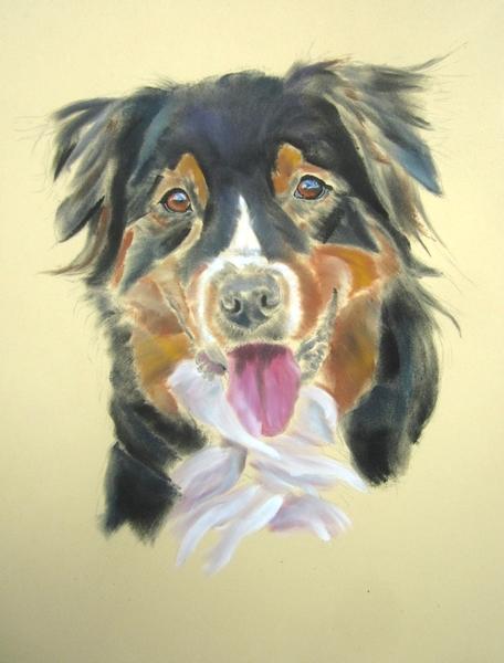 chien panpastel