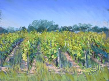 vignes au pastel sec