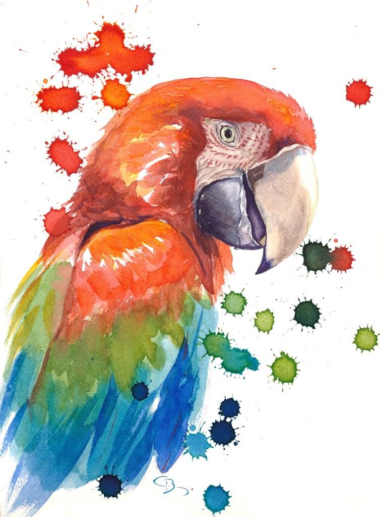 aquarelle perroquet