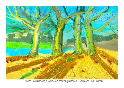 naked trees A572