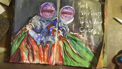 Art Journal Mantis Shrimp