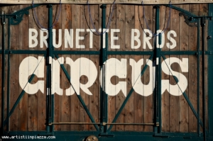 Brunette Bros
