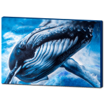 reflections whale print