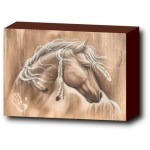 wild-spirit-horse-wall-art