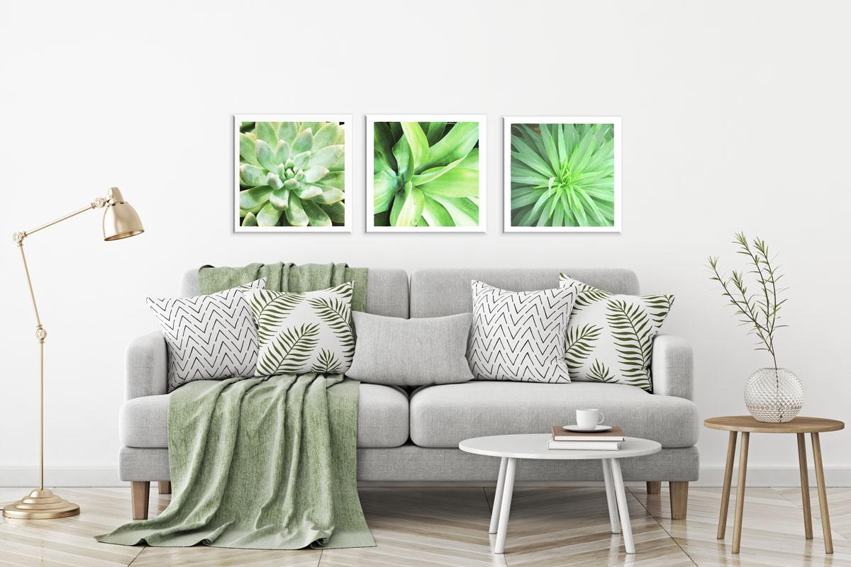 succulents-wall-art-print-set-3