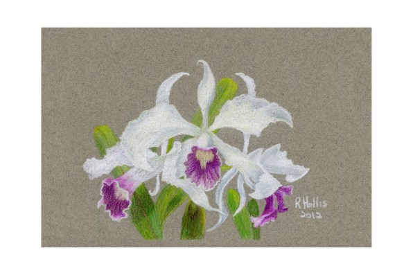 "Orchid 5""x 7"" $90"