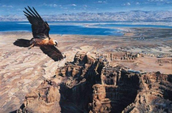 Bearded Vulture over Masada, Martin Rinik - Slovakia