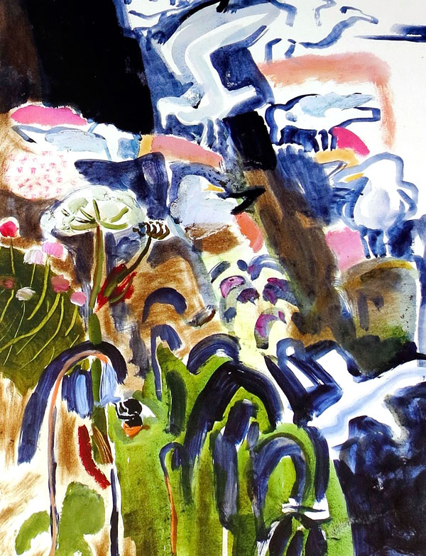 Kim Atkinson - Little Sark - Herring Gulls nesting colony