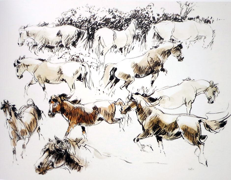 Wolfgang Weber - Horses