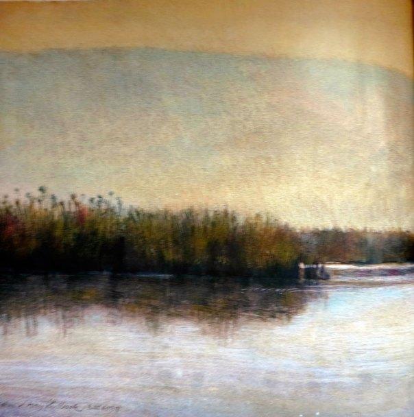 Robin Shillcock - Agamon Evening