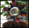 Soda   Can Flowers
