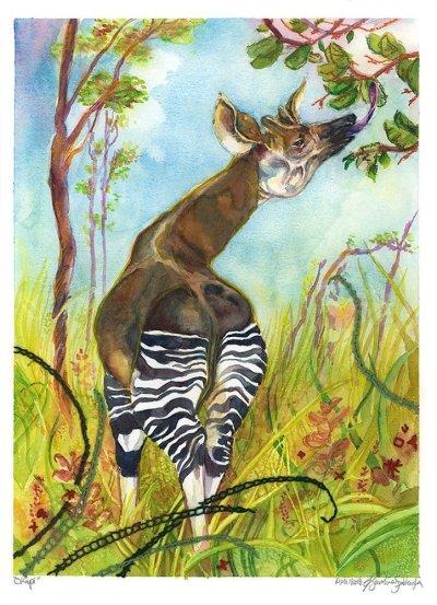 giraffe okapi watercolor mixed mediums