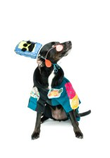 Doggy-Dress-Up-10