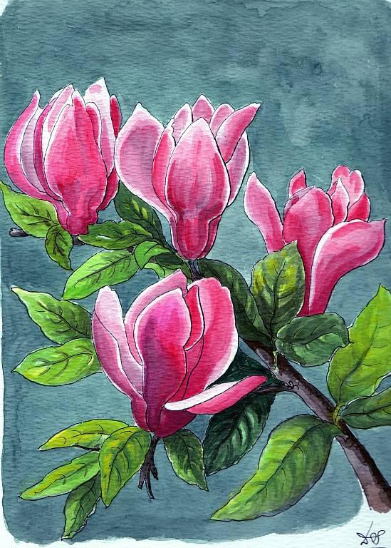Magnolia Liliflora  vendita quadro pittura  ArtlyNow