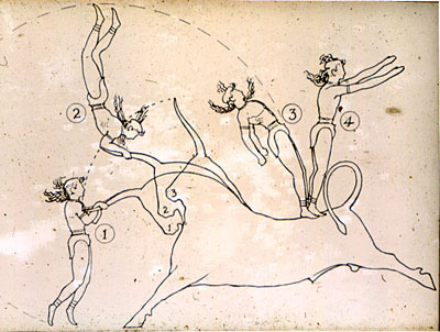 bull_leaping_evans_sketch