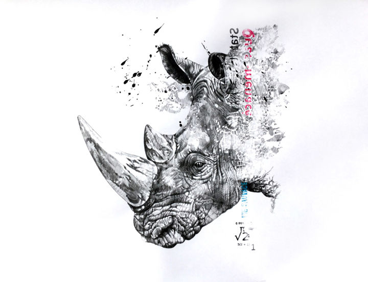 rhino drawing by joanna