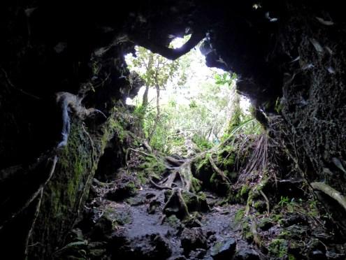 90-Rangitoto caves