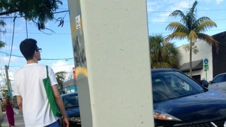 What Short, Strange Miami Trip It's