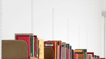 Ringborg's Lonesome Library