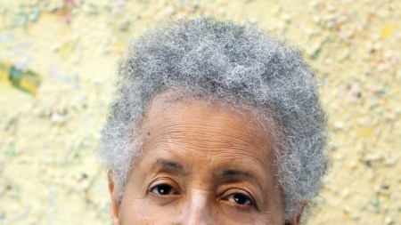 Full Circle: Howardena Pindell Steps Back