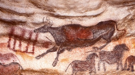 What Cave Art Means