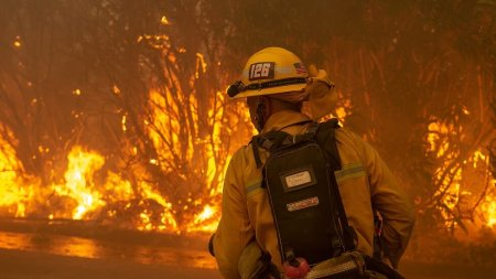 Fires Blaze Southern California, Art Institutions