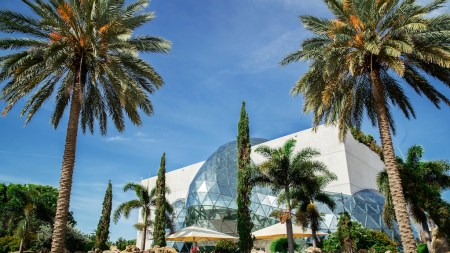 Salvador Dalí Museum Florida Plans $38