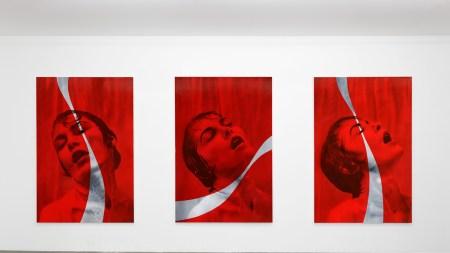 """Installation view of """"Aguirre Schwarz: Savoure"""