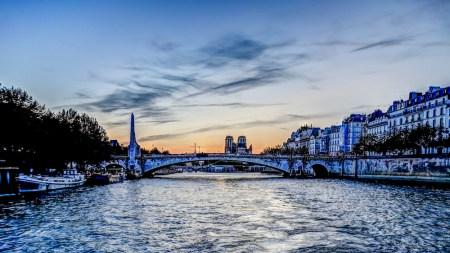 Pace Gallery Plans Paris Presence