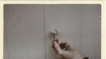 Man's hand holding up a mushroom