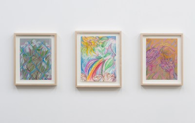 Three drawings of flowers are arranged in a triptych-like formation. They are all have rainbow pallettes and wooden frames.