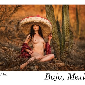 Naked in Baja Postcard Set