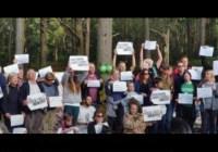 Leith Hill Celebration Walk – Save Leith Hill 3 Dec 2016