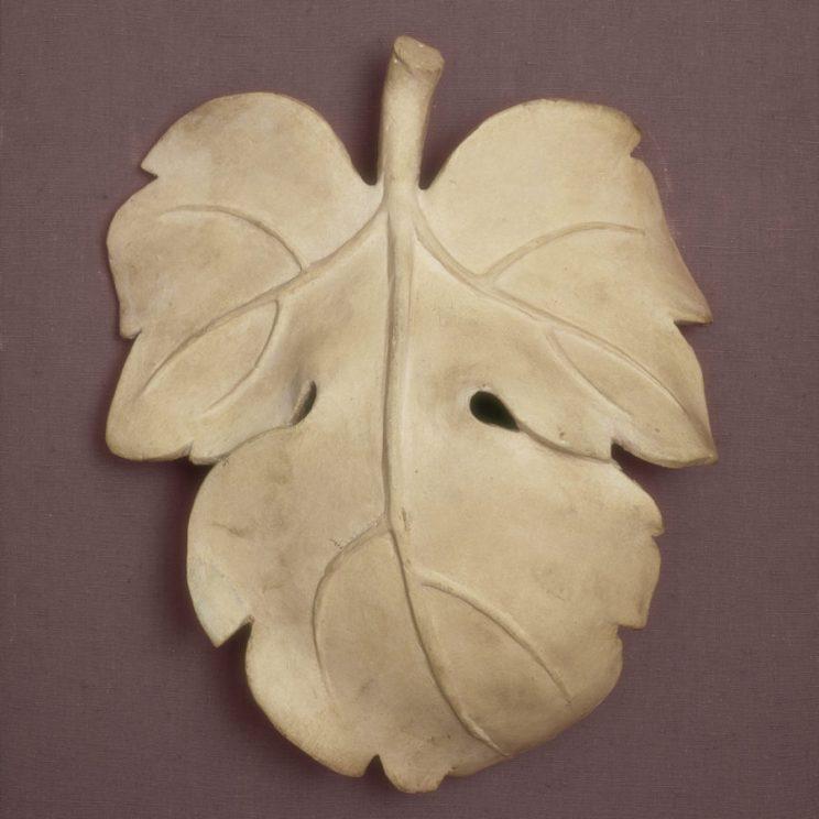 david-fig-leaf