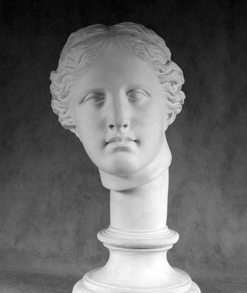 Гипсовая голова Венера Милосская