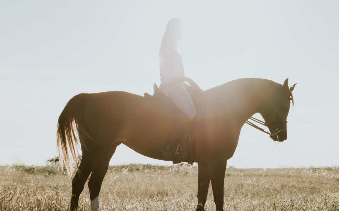 Exploring The Equestrian Sport and Lifestyle