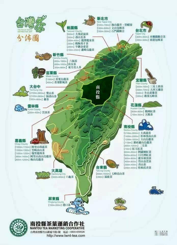 Taiwanese tea farms