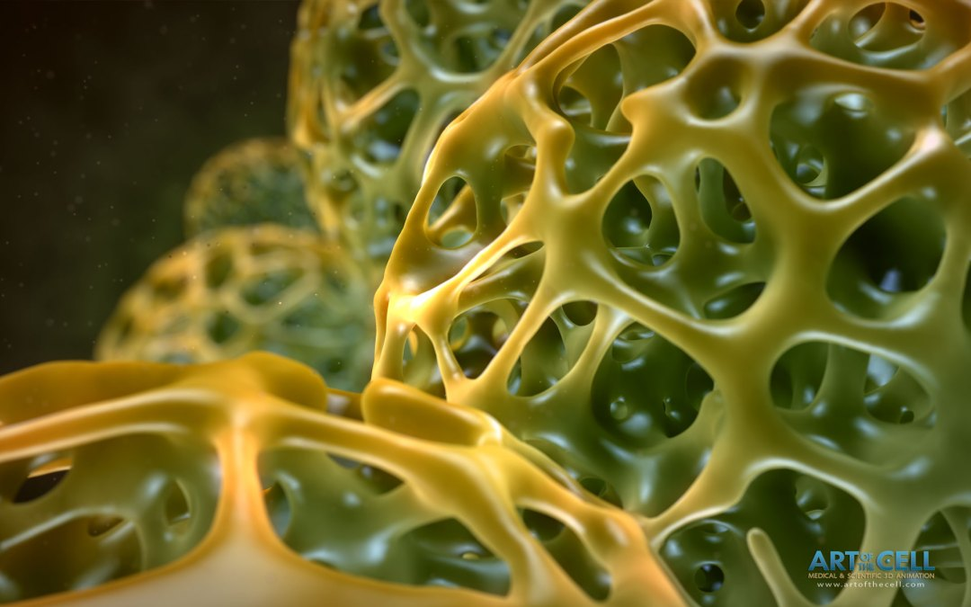 Voronoi-Spheres medical video animation 3D