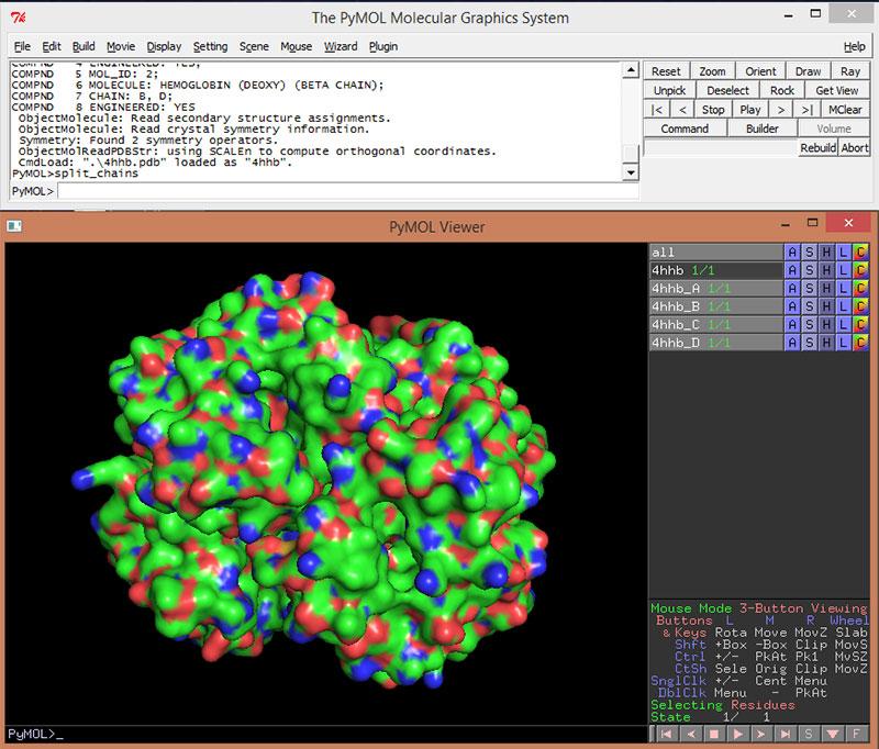 Art of the Cell - Pymol Tutorial