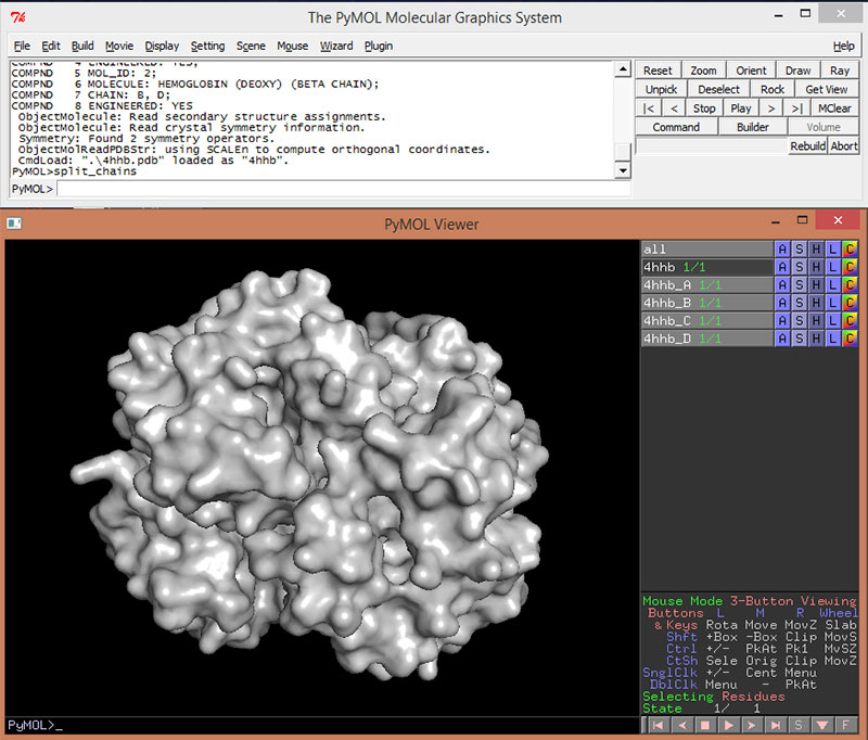Art of the Cell - Pymol Tutorial