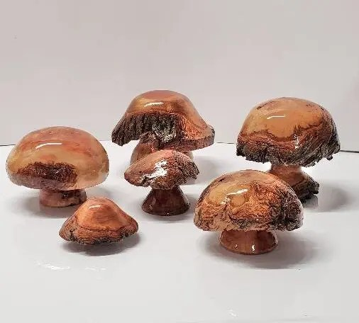 Bottleneck Burl Mushrooms