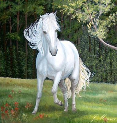 Yvette Mannee  Wit paard in landschap schilderijenolieverf