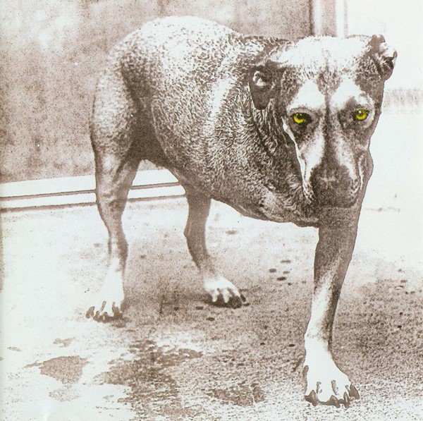 """Alice In Chains"" – Alice In Chains"
