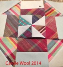 Carole Wool DPW