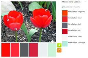 ColorPlay Feb 24 n.5