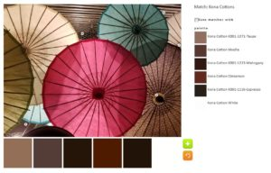 ColorPlay-Umbrellas-n4
