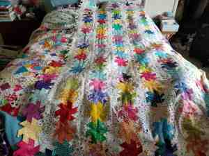 Half hexie star top on the bed