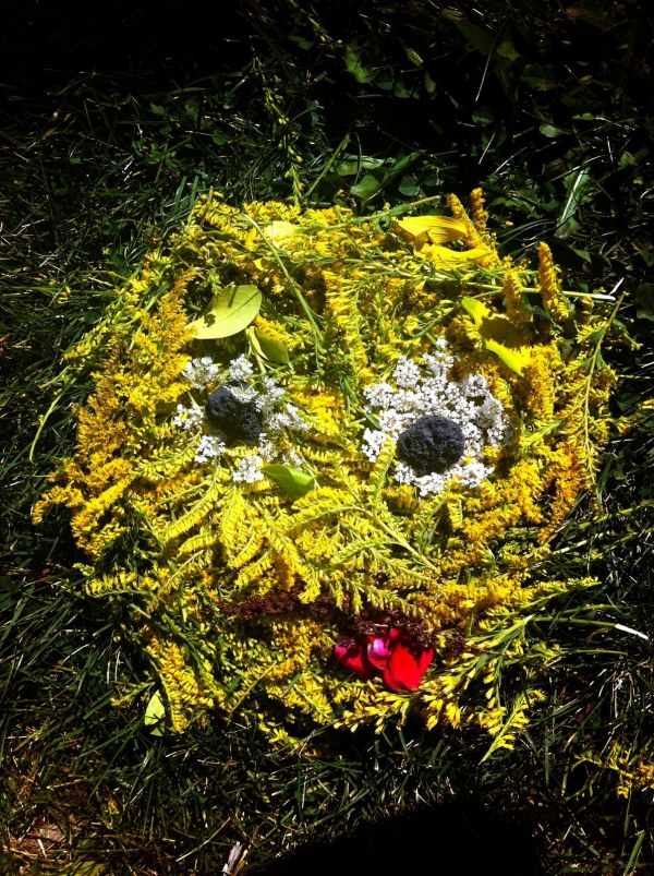 Andy Goldsworthy Paintings