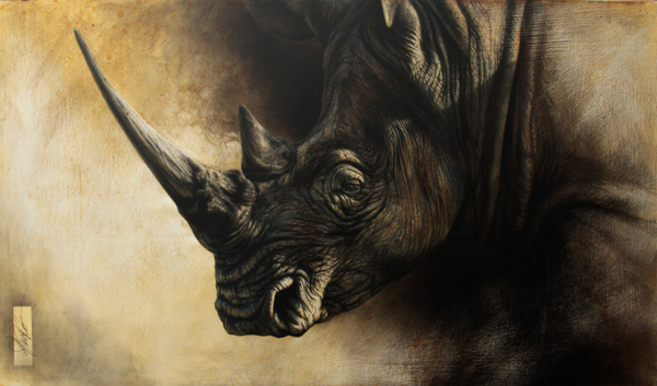 rhino paintings