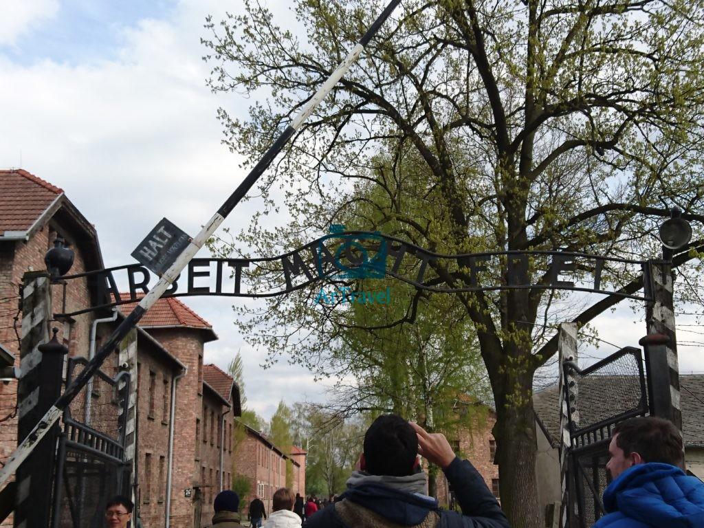 ArTravel - Auschwitz-Birkenau - Cracovia